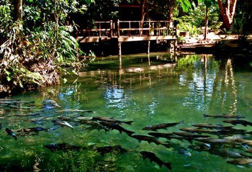 Тропический рай - Национальный парк Тхам-Ла