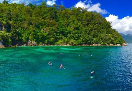 Флора и фауна Ко Липе - природа острова