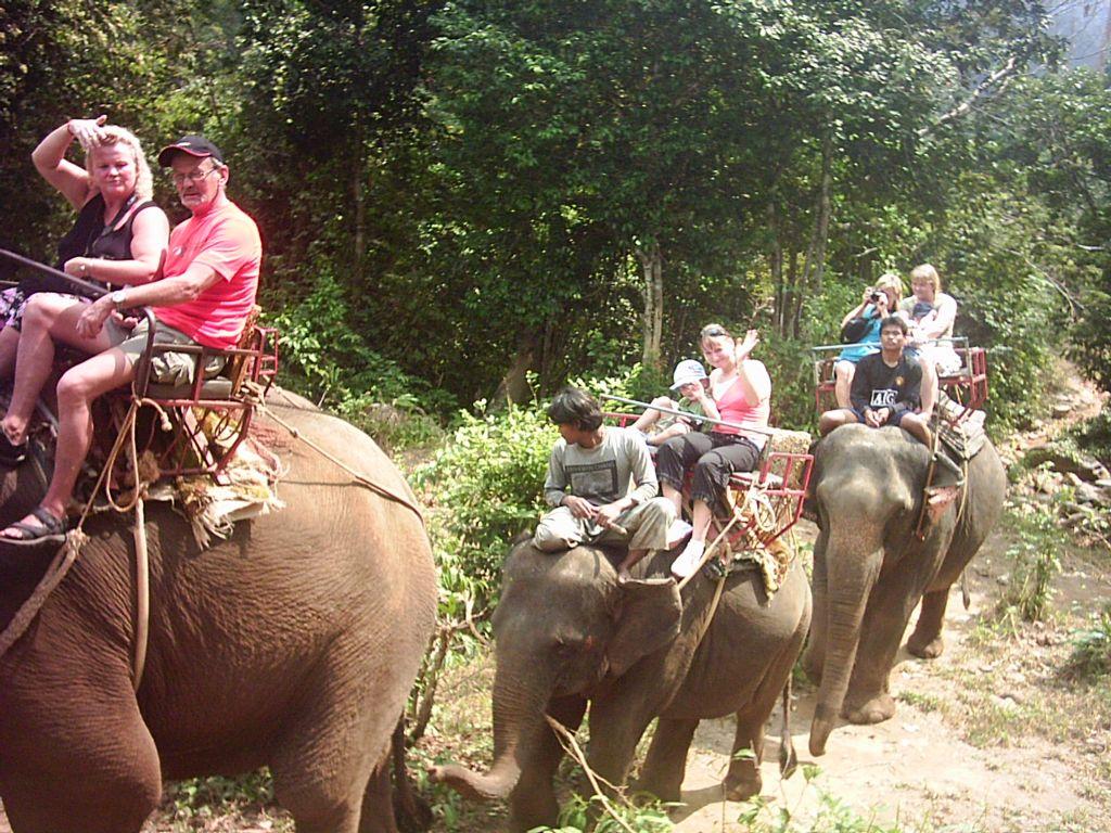 Катание на слонах на Пхукете, одно из лучших развлечений в Тайланде