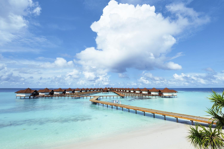 Мальдивы или Сейшелы, что лучше выбрать для отдыха