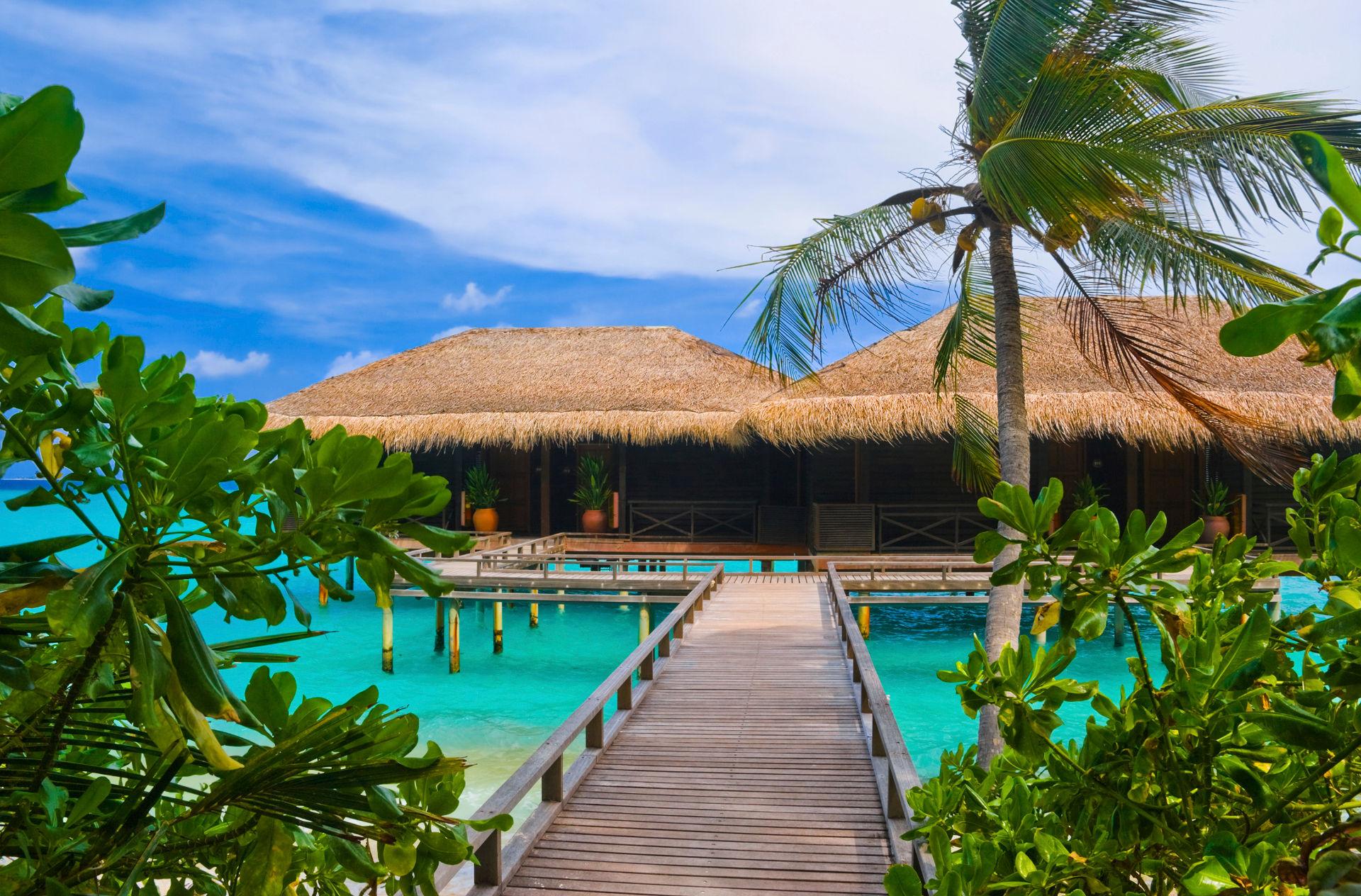 Что выбрать Мальдивы или Сейшелы