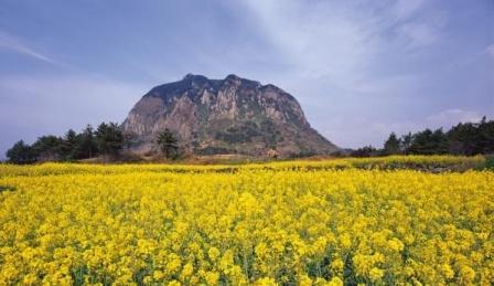 Южная Корея отдых на море остров Чеджу