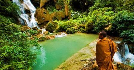 Флора и фауна в Северном Лаосе завораживает своими красотами