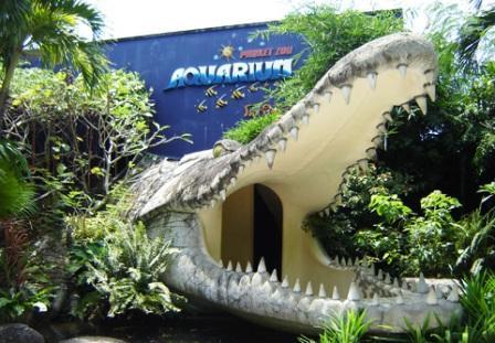 Аквариум зооопарка на Пхукете