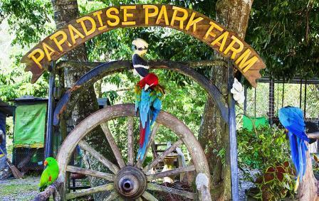 Парадайз Парк (Paradise Park Farm) на Самуи - Тайланд