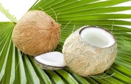 Почему нельзя вывозить кокосы из тайланда