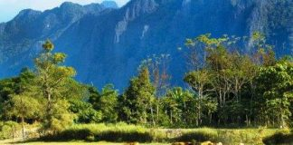 Климат Лаоса: самые жаркие и холодные месяцы страны