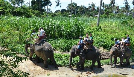 Стоимость экскурсий в Таиланде