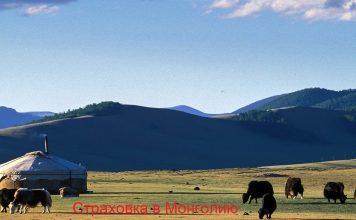 Страховка в Монголию: медицинский и страховой полис