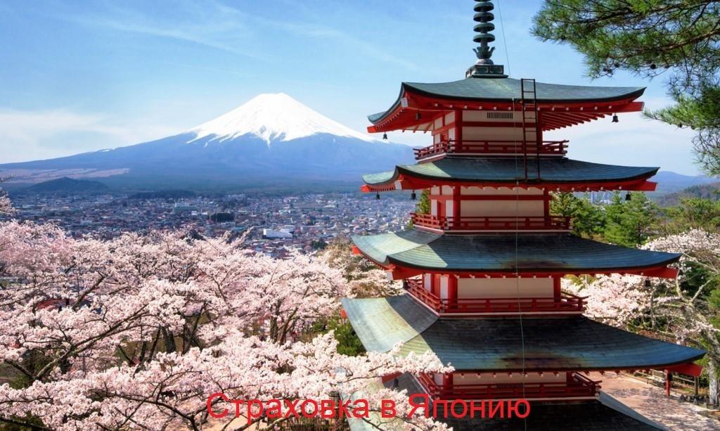 Страховка в Японию для туристов: виды, способы и правила